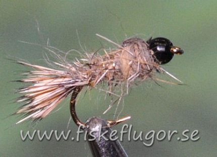 Tungsten Blackhead GRHE Nymph Natural
