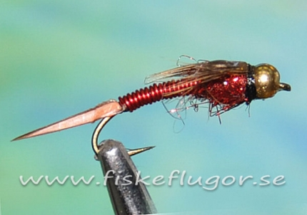 BH Coppercats Nymph Red