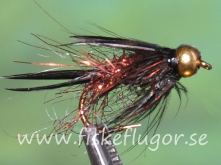 BH Prince LB Nymph Copper