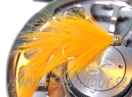 BH Bunny Leech Orange