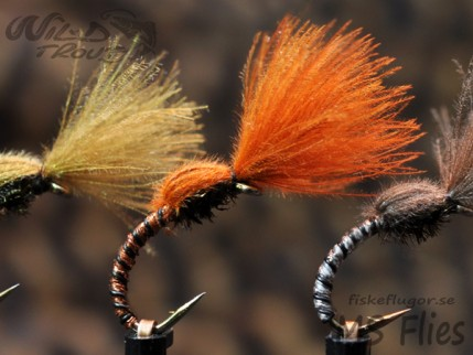 MS CDC No Hackle Emerger Copper Rusty