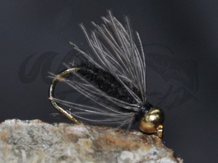12-Pack BH CDC Softhackle Nymph Black