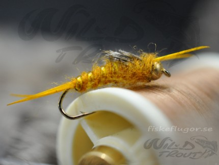 BH_stonefly_nymph_golden_2_wt_a.jpg