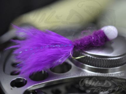 12-Pack Booby Nymph Purple