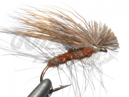 CDC Elk Hair Caddis Brown