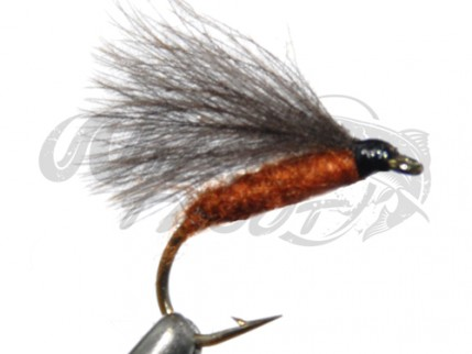 CDC F-Fly Brown