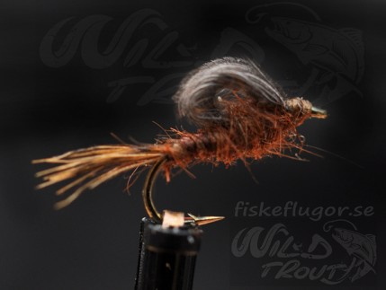 CDC Loopwing Emerger Brun