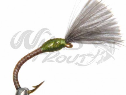12-Pack CDC Quill Buzzer Olive
