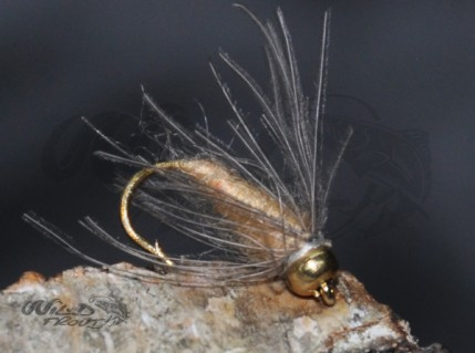 Tungsten Goldhead CDC Softhackle Nymph Tan
