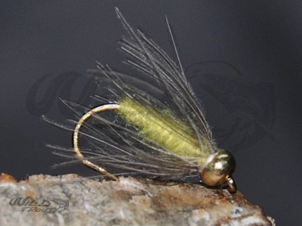 BH CDC Softhackle Nymph Yellow