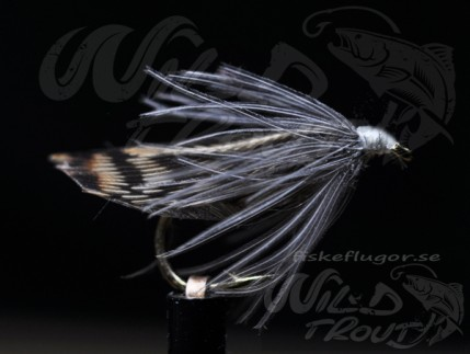 CDC_tapewing_caddis_wt_1.jpg