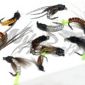 Caddis Pupa Collection