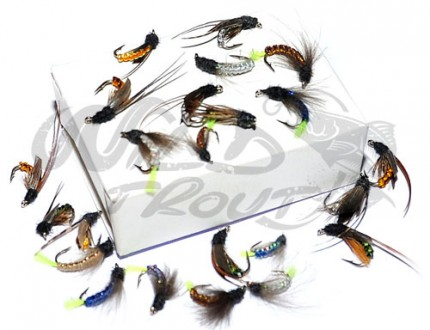 Caddis_pupa_collection_wt_2.jpg