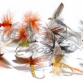Dry Fly Collection