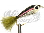 Epoxy Rainbow Minnow