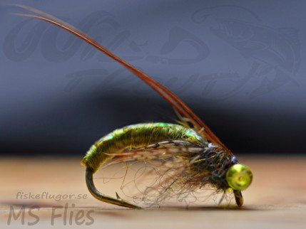 MS Caddis Puppa Olive
