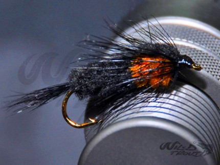 Montana Nymph Orange