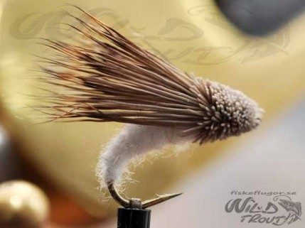 Streaking_Caddis_white_A2.jpg