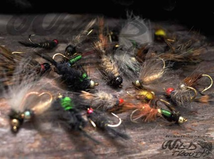 Tungsten Nymph Mix Collection
