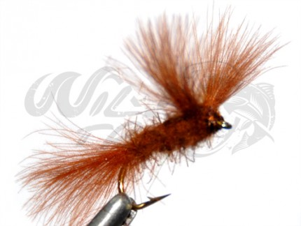 12-Pack CDC V-Fly Brown