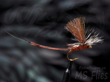 MS Ghostwing Mayfly Brown