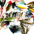 Wet Fly Collection
