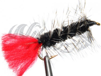 Wooly Worm Black